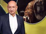 Mandatory Credit: Photo by David Fisher/REX/Shutterstock (5636483k)\nBen Kingsley\n'The Jungle Book' film premiere, London, Britain - 13 Apr 2016\n
