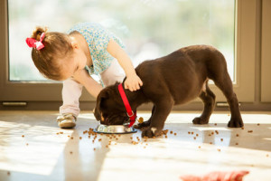 file_1155_column_feeding-puppy