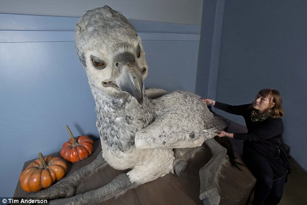 Magical: The bird appears in Hagrid the gamekeeper's pumpkin patch but is sentenced to death for an attack