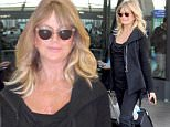 Picture Shows: Goldie Hawn  April 15, 2016\n \n Actress Goldie Hawn was seen arriving on a flight at the Washington Dulles International Airport in Washington DC. Goldie was all smiles as she made her way through the airport, even taking the time to take a picture with a fan.\n \n Non-Exclusive\n UK RIGHTS ONLY\n \n Pictures by : FameFlynet UK © 2016\n Tel : +44 (0)20 3551 5049\n Email : info@fameflynet.uk.com