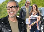 Mandatory Credit: Photo by Rob Latour/REX/Shutterstock (5659659bd)\nJeff Goldblum\nSafe Kids Day, Los Angeles, America - 24 Apr 2016\n