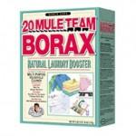 20 mule team borax to kill fleas