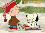 """I WANT A DOG FOR CHRISTMAS, CHARLIE BROWN! -  Produced and animated by the same team that gave us the now classic """"PEANUTS"""" specials from the late cartoonist Charles M. Schulz's famed comic strip, """"I Want a Dog for Christmas, Charlie Brown!"""" will air TUESDAY, DECEMBER 19 (8:00-9:00 p.m., ET), on The ABC Television Network. """"I Want a Dog for Christmas, Charlie Brown!"""" centers on ReRun, the lovable but ever-skeptical younger brother of Linus and Lucy. It's Christmas vacation and, as usual, ReRun¿s big sister is stressing him out, so he decides to turn to his best friend, Snoopy, for amusement and holiday cheer. However his faithful but unpredictable beagle companion has plans of his own, giving ReRun reason to ask Snoopy to invite his canine brother Spike for a visit. When Spike shows up, it looks like ReRun will have a dog for Christmas after all¿ but then the real trouble begins. (Photo by ABC Photo Archives/ABC via Getty Images)"""