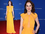 Mandatory Credit: Photo by REX/Shutterstock (5668844bm)\nMichelle Dockery\nWhite House Correspondent's Association Dinner, Washington, D.C, America - 30 Apr 2016\n