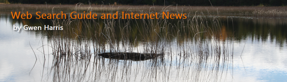 Web Search Guide and Internet News