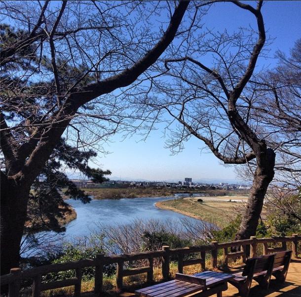 tamagawa.png