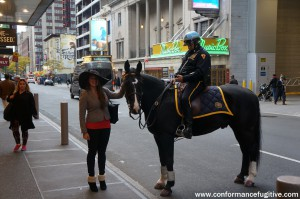 NYC Mounted Police - Times Square