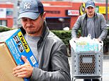 EXCLUSIVE: Jeremy Renner shopping at Pep Boys Auto parts store in Hollywood. \n\nPictured: Jeremy Renner\nRef: SPL1277341  100516   EXCLUSIVE\nPicture by: nich503 / Splash News\n\nSplash News and Pictures\nLos Angeles: 310-821-2666\nNew York: 212-619-2666\nLondon: 870-934-2666\nphotodesk@splashnews.com\n