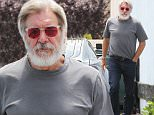 """Exclusive... 52053471 'Star Wars' actor Harrison Ford is spotted at a bicycle shop in Santa Monica, California on May 12, 2016. The 73 year old star was sporting a large grey beard during the outing. Actress Jennifer Lawrence recently revealed an embarrassing moment she shared with Harrison and JJ Abrams, telling TV host Graham Norton, """"So I went up to them and started dancing like an idiot and the whole table just went quiet and stared at me. I realized while I am dancing that they had absolutely no idea who I was so I just turned around and walked back to Jack dying of embarrassment.""""  FameFlynet, Inc - Beverly Hills, CA, USA - +1 (310) 505-9876"""