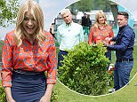 EDITORIAL USE ONLY. NO MERCHANDISING Mandatory Credit: Photo by Ken McKay/ITV/REX/Shutterstock (5686605cc) Holly Willoughby, Phillip Schofield 'This Morning' TV show, London, Britain - 17 May 2016 GIVE YOUR LAWN A TRIM WITH STEVE WILSON, It's finally starting to feel like summer is on it's way - which means it's time to get your garden in shape to enjoy the sunshine. From cordless to robotic we have Steve Wilson on hand with his guide to the best lawnmowers on the market and his top tips for using them.