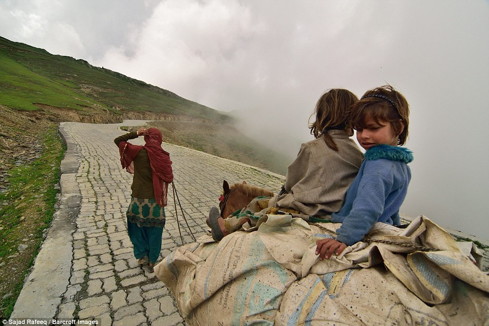 A bakarwal woman leading the herd, with her young children sat atop one one of their donkeys, as they pass along one of the highest passes leading towards the Gurez Valley