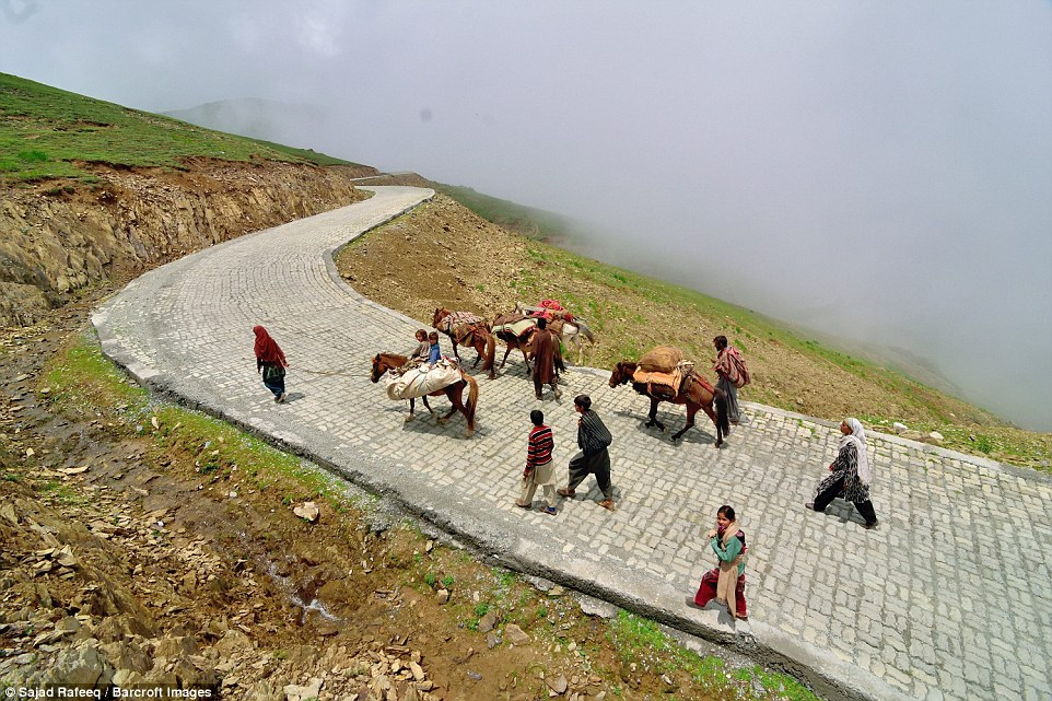 Bakarwals pictured following the herd while on the move from Jammu to Kashmir. The tribal people follow the custom of annual migration of their sheep and cattle and keep travelling all year round