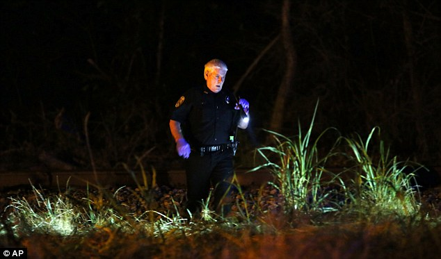 A police officer wades through the long grass looking for personal belongings of those killed in the crash