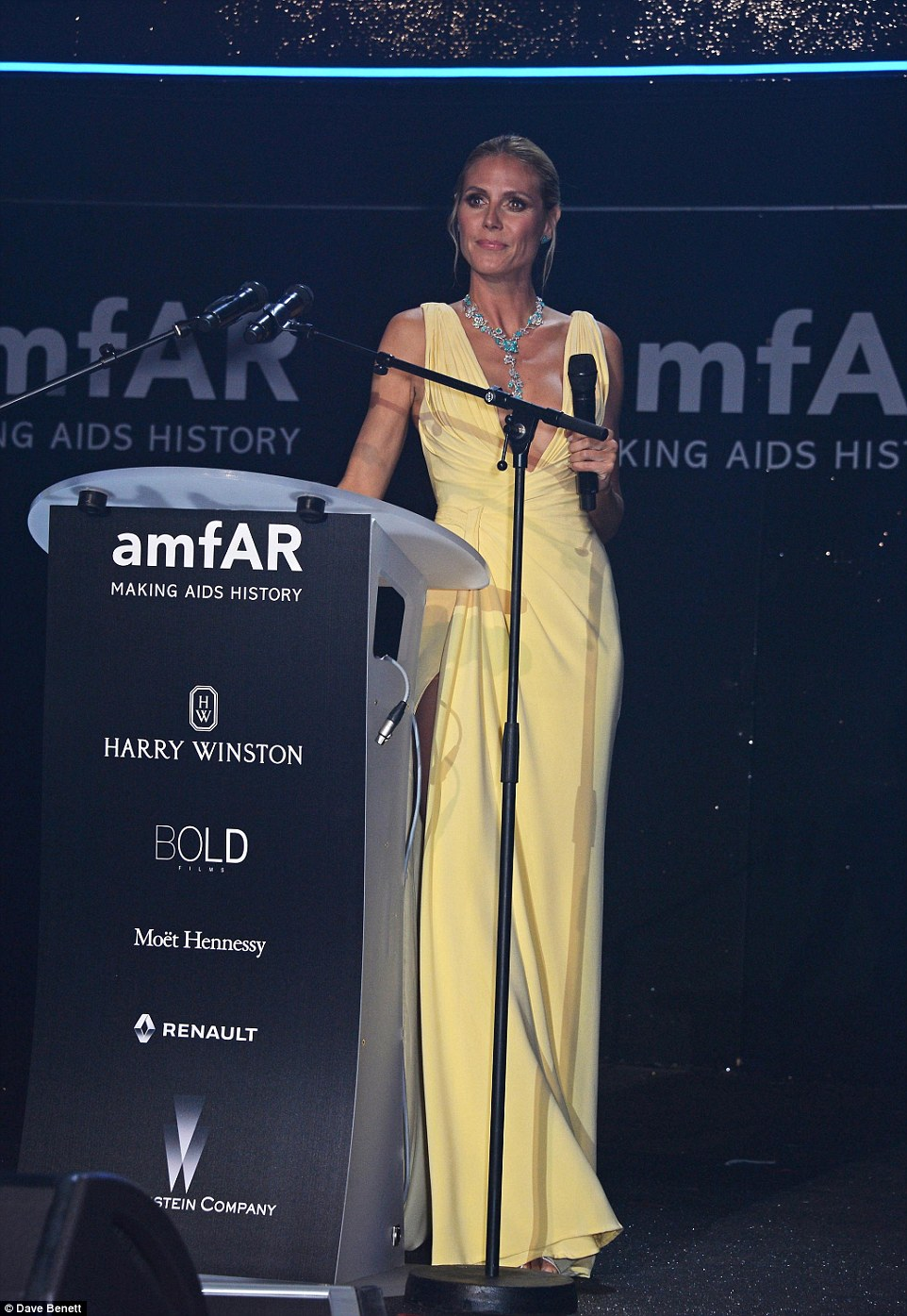 Mellow yellow: With her stunningly bright gown, Heidi stood out against the shimmering backdrop as she chatted to the crowd