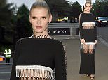 23rd May 2016\n\nVogue - 100th anniversary gala dinner held at The East Albert Lawn in Kensington Gardens, London.\n\nHere: Lara Stone\n\nCredit: GoffPhotos.com