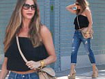 Colombian beauty Sofia Vergara went pick up food for the family at Petrossian restaurant in Beverly Hills\n\nPictured: sofia vergara\nRef: SPL1215156  270516  \nPicture by: Splash News\n\nSplash News and Pictures\nLos Angeles: 310-821-2666\nNew York: 212-619-2666\nLondon: 870-934-2666\nphotodesk@splashnews.com\n