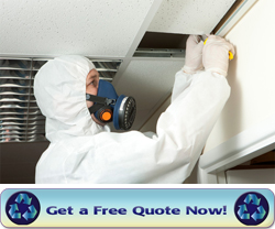 asbestos_ceiling_removal