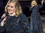 VERONA, ITALY - MAY 28:  Adele performs at Arena di Verona on May 28, 2016 in Verona, Italy.  (Photo by Francesco Prandoni/Getty Images)