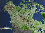 The northern reaches of North America are getting greener, according to a NASA study that provides the most detailed look yet at plant life across Alaska and Canada. In a changing climate, almost a third of the land cover ? much of it Arctic tundra ? is looking more like landscapes found in warmer ecosystems.  With 87,000 images taken from Landsat satellites, converted into data that reflects the amount of healthy vegetation on the ground, the researchers found that western Alaska, Quebec and other regions became greener between 1984 and 2012. The new Landsat study further supports previous work that has shown changing vegetation in Arctic and boreal North America.  Landsat is a joint NASA/U.S. Geological Survey program that provides the longest continuous space-based record of Earth?s land vegetation in existence.