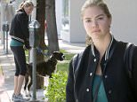*EXCLUSIVE* West Hollywood, CA - Kate Upton is looking casual cute arriving at an office with her dog.\n \nAKM-GSI          June 2, 2016\nTo License These Photos, Please Contact :\nMaria Buda\n(917) 242-1505\nmbuda@akmgsi.com\nsales@akmgsi.com\nor \nMark Satter\n(317) 691-9592\nmsatter@akmgsi.com\nsales@akmgsi.com