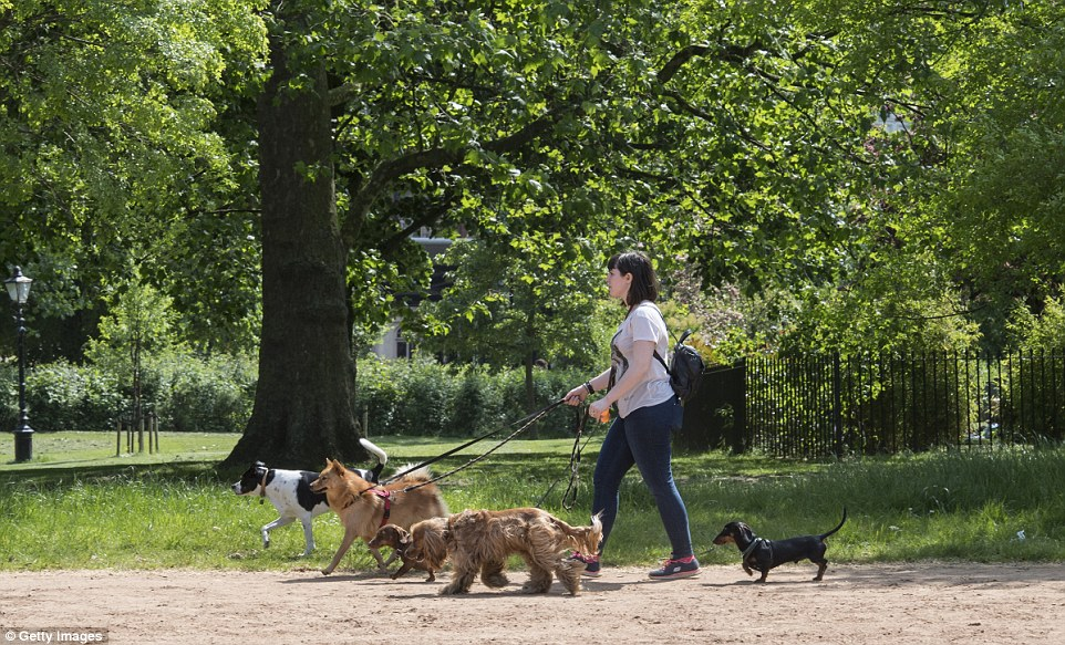 The weather today in London was warm and sunny with high temperatures expected to continue for the weekend