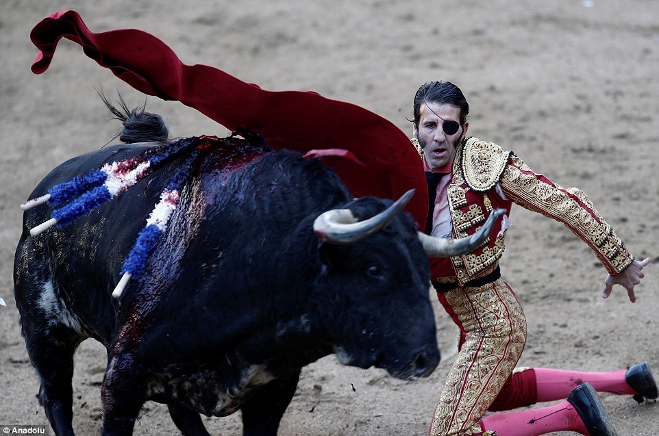 Olé! Drenched in its own blood, a bull is taunted by one-eyed matador Juan Jose Padilla to the delight of the audience