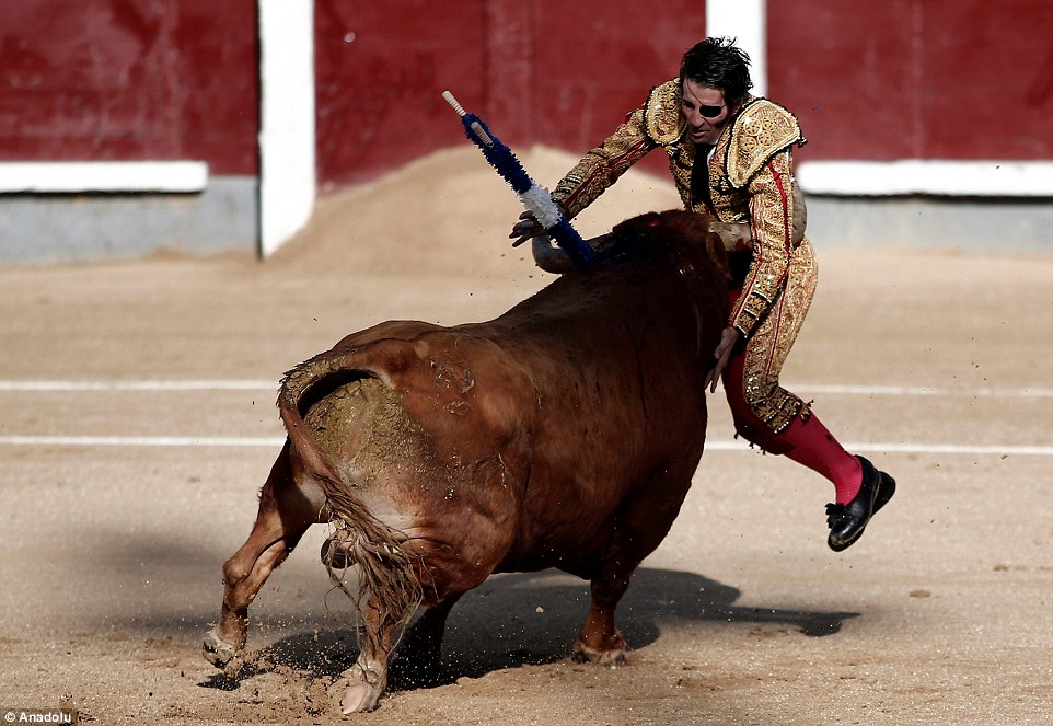 One-eyed matador Juan Jose Padilla was picked up by the charging bull before being dashed to the ground at Las Ventas bullring in Madrid, Spain