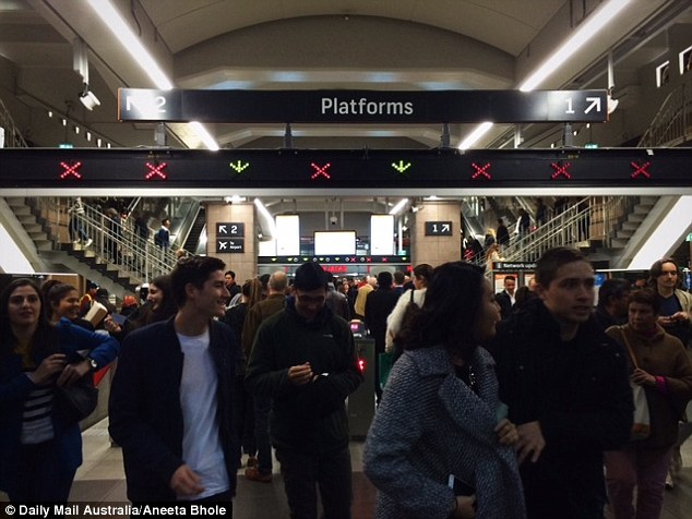 Circular Quay train station was packed with curious visitors hoping to catch a glimpse of the 80 light displays located across Sydney's harbour (pictured)
