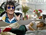 Ronnie Wood SLEEP PUFF.jpg