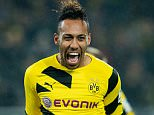 Pierre-Emerick Aubameyang of Dortmund celebrates scoring the opening goal during the Bundesliga match between Borussia Dortmund and VfL Wolfsburg at Signal Iduna Park on December 17, 2014 in Dortmund, Germany.       DORTMUND, GERMANY - DECEMBER 17:  (Photo by Alexandre Simoes/Borussia Dortmund/Getty Images)