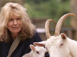 Carla Lane was also well-known as an animal rights campaigner as well as an acclaimed dramatist