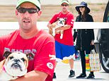 EXCLUSIVE TO INF.\nJune 10, 2016:  Adam Sandler and wife Jackie Sandler with their dog hop on a private plane to head out for vacation in Los Angeles, CA.\nMandatory Credit: INFphoto.com Ref.: infusla-300