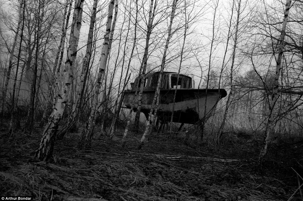 Abandoned: The rusted remains of a boat are seen among the bare branches of the trees within the exclusion zone that surrounds the abandoned Chernobyl Nuclear Power Plant in Ukraine