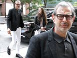 Jeff Goldblum and Emilie Livingston spotted out and about in New York City, New York.\n\nPictured: Jeff Goldblum, Emilie Livingston\nRef: SPL1299956  110616  \nPicture by: Said Elatab / Splash News\n\nSplash News and Pictures\nLos Angeles: 310-821-2666\nNew York: 212-619-2666\nLondon: 870-934-2666\nphotodesk@splashnews.com\n