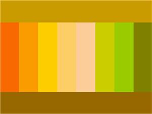 таблица сочетания горчичного цвета