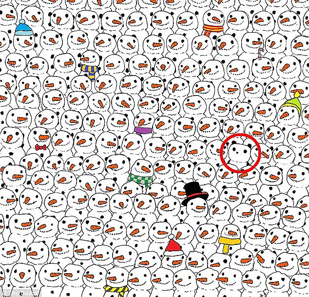 The image of the panda was shared hundreds of thousands of times as it captivated internet users who eventually found him here