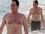 Picture Shows: Bryan Cranston  June 14, 2016    'Breaking Bad' actor Bryan Cranston and his wife Robin Dearden enjoy a day on the beach in Maui, Hawaii. Bryan had a blast taking a dip in the ocean while his wife Robin waited on the beach with his shirt.    Non Exclusive  UK RIGHTS ONLY    Pictures by : FameFlynet UK � 2016  Tel : +44 (0)20 3551 5049  Email : info@fameflynet.uk.com