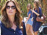 Please contact X17 before any use of these exclusive photos - x17@x17agency.com   Cindy Crawford drops her 14-year-old daughter and burgeoning model Kaia Gerber off at the exclusive SOHO House restaurant in Malibu for lunch. Kaia and the supermodel Cindy are seen hugging before Cindy jumps in her car and drives off. The young daughter is not old enough to drive but is apparently old enough to eat at the newest hot spot in town by herself. Friday, June 17, 2016 X17online.com PREMIUM EXCLUSIVE