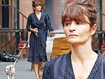16.June.2016 - New York ? USA\n*** STRICTLY AVAILABLE FOR UK AND GERMANY USE ONLY ***\nNew York, NY - Helena Christensen walks her new Australian Shephard pup while looking casual in a dark dress. The new pup finds a friend on the way as he is seen hanging out with another dog.\nBYLINE MUST READ : AKM-GSI-XPOSURE\n***UK CLIENTS - PICTURES CONTAINING CHILDREN PLEASE PIXELATE FACE PRIOR TO PUBLICATION ***\n*UK CLIENTS MUST CALL PRIOR TO TV OR ONLINE USAGE PLEASE TELEPHONE 0208 344 2007*\n