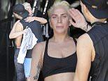 EXCLUSIVE TO INF.\nJune 19, 2016: Lady Gaga was seen trying to keep a low profile in Los Angeles, California. The pop star was seen after a Soul Cycle workout as she drove around in her old tuff red truck.\nMandatory Credit: Borisio/Lazic/INFphoto.com Ref: infusla-257/277