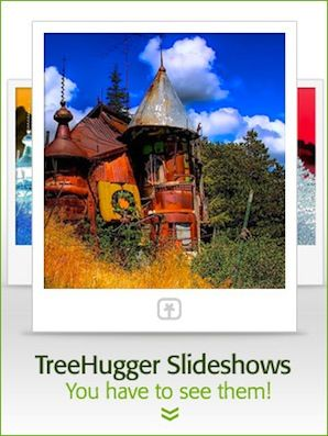 treehugger slideshows