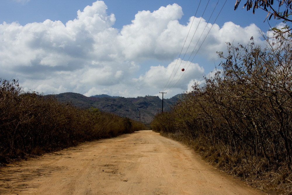 Dirt Road to Mahaulepu Beach