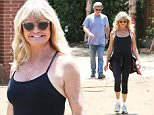 Palisades, CA - Goldie Hawn and Kurt Russell are in good spirits about their new house as they are seen joking around with one another while checking in on their soon-to-be home sweet home.\n  \nAKM-GSI       June 25, 2016\nTo License These Photos, Please Contact :\nMaria Buda\n(917) 242-1505\nmbuda@akmgsi.com\nsales@akmgsi.com\nMark Satter\n(317) 691-9592\nmsatter@akmgsi.com\nsales@akmgsi.com\nwww.akmgsi.com