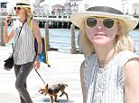 Picture Shows: Naomi Watts  June 25, 2016\n \n Producer and actress Naomi Watts takes her dog for a walk in New York City, New York.  Afterwards, she had a picnic in the park.\n \n Non Exclusive\n UK RIGHTS ONLY\n \n Pictures by : FameFlynet UK © 2016\n Tel : +44 (0)20 3551 5049\n Email : info@fameflynet.uk.com