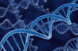 Message From God Found Hidden Inside DNA Sequence