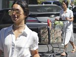 Studio City, CA - Actress, Vanessa Hudgens, looks like a lady in a 50's inspired midi dress as she pushes a cart full of groceries.  She purchased a baguette, watermelon, amongst other house staples.\nAKM-GSI          July 15, 2016\nTo License These Photos, Please Contact :\nMaria Buda\n(917) 242-1505\nmbuda@akmgsi.com\nsales@akmgsi.com\nor \nMark Satter\n(317) 691-9592\nmsatter@akmgsi.com\nsales@akmgsi.com\nwww.akmgsi.com