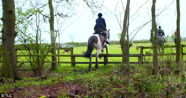 The hunt Katie joined in Cheshire involves hounds and horses tracking a scent laid down by runners
