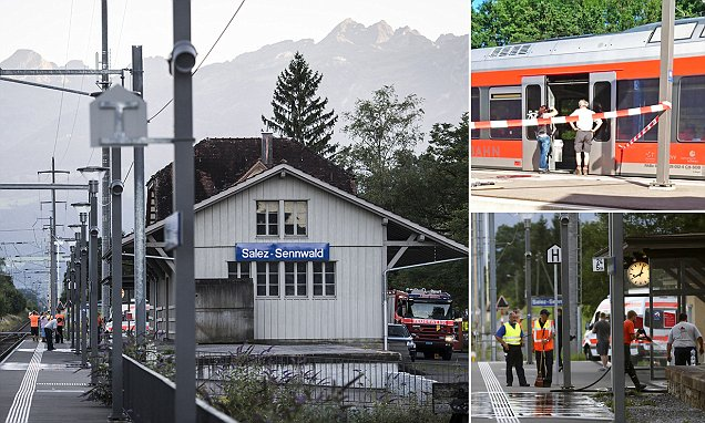 Swiss train passengers injured by man in fire and knife rampage