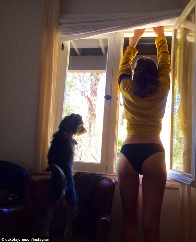 'The ass is the window to the soul': On Friday, Dakota Johnson posted an Instagram photo of herself adjusting the blinds without any trousers on