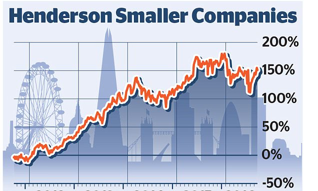 HENDERSON SMALLER COMPANIES:It's risky - but a bet on small firms can mean big profits
